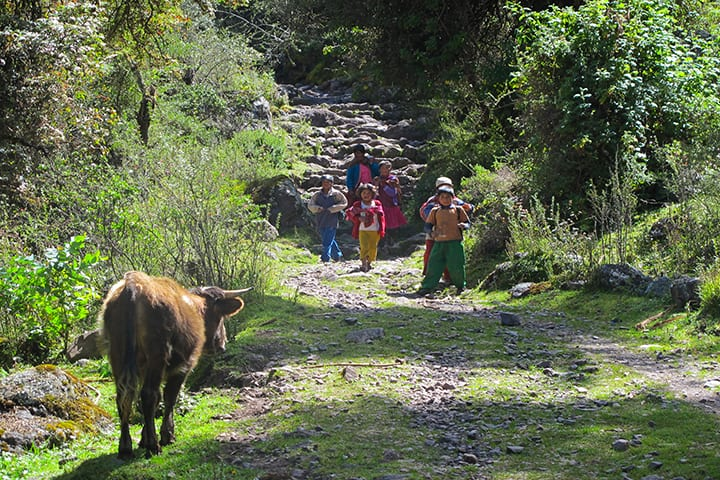 children returning from school in lares trek
